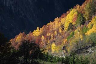Dalla Natura Parchi e Riserve :: Le Bellezze della Valmasino